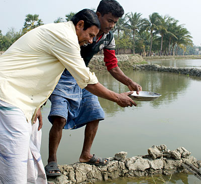 Fish farming on the Ganges